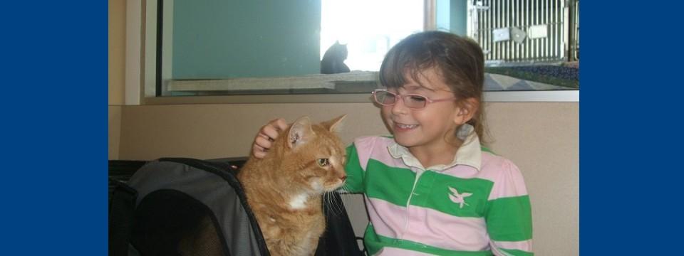 Pets & Kids